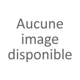 Tisane L'Hépatante